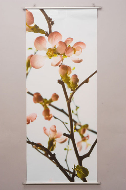 Spring Blossom Picture Hanging Banner Display 100x40cm