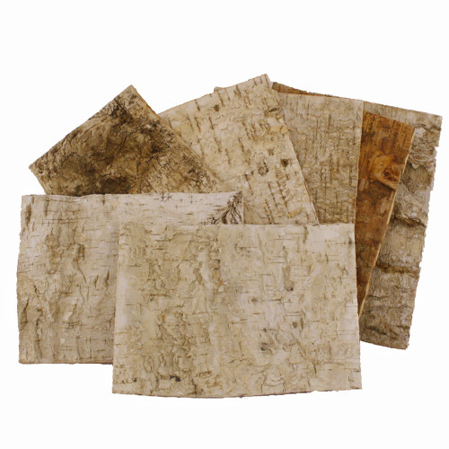 Birch Tree Bark Sheets 24x17cm Pack of 7