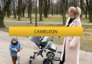 Bugaboo cameleon with ride along board for newborn and toddler