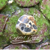 Leopard Jasper, Healing properties with this unique natural stone with spots like a leopard.