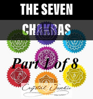 Everything You Need to Know About the Seven Chakras in a 8 Part Series