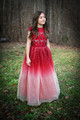 Red Ombre Sparkle Dress