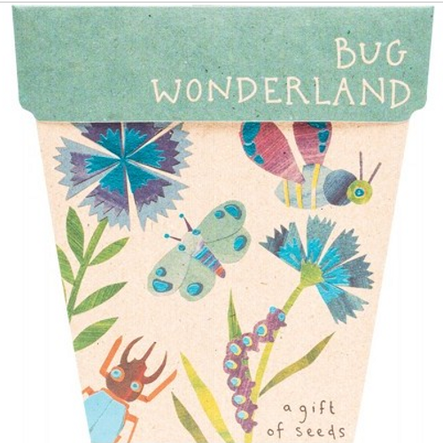 Sow 'N Sow Gift Of Seeds Bug Wonderland 1