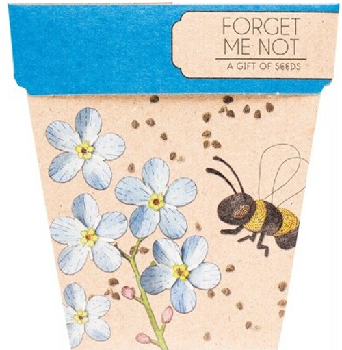 Sow 'N Sow Gift Of Seeds Forget Me Not 1