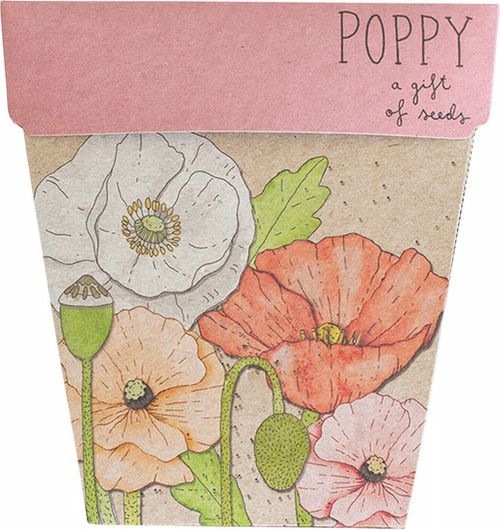Sow 'N Sow Gift Of Seeds Poppy 1