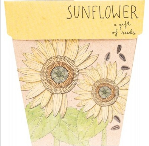 Sow 'N Sow Gift Of Seeds Sunflower 1