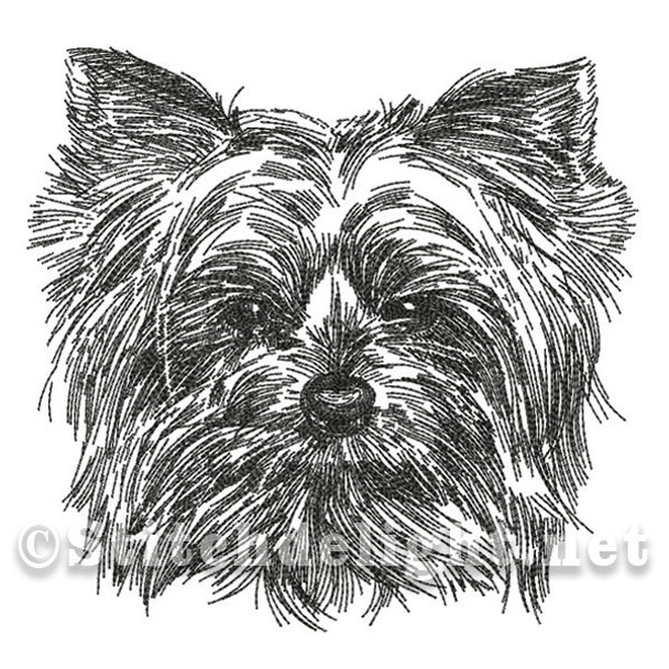 SDS0477 Pencil Sketch Yorkie
