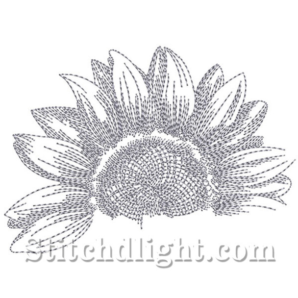 SD1443 Pencil Sketch Sunflower