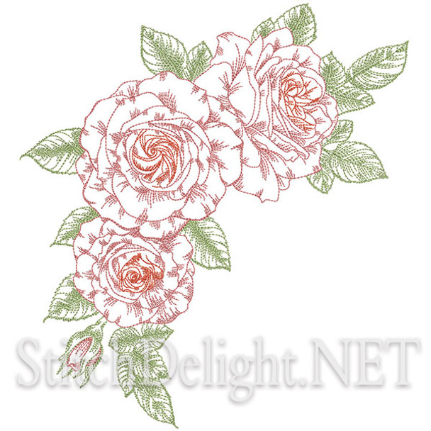 SD1283 Roses