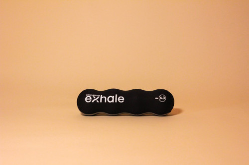 Recovery by Exhale Worm Roller