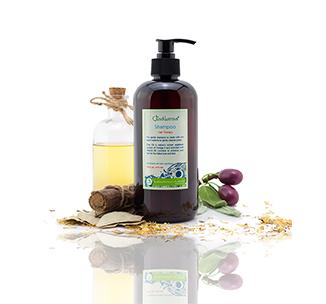 renewal-hair-shampoo-kit-326-x-304.jpg