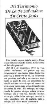 Spanish: Personal Testimony of Karin McGuire - Tract