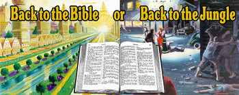 Back to the Bible or Back to the Jungle - Magnet