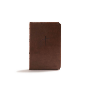 Broadman & Holman Bible: Compact Brown LeatherTouch