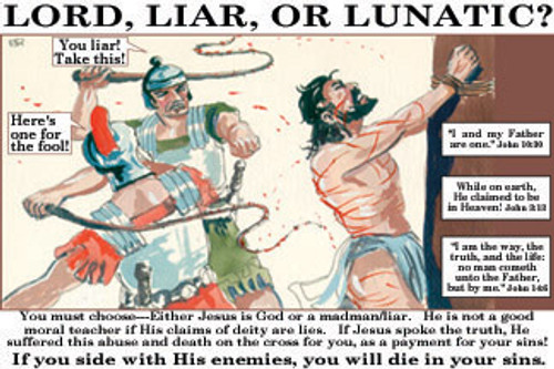 Lord, Liar, Lunatic - Banner (more sizes available)
