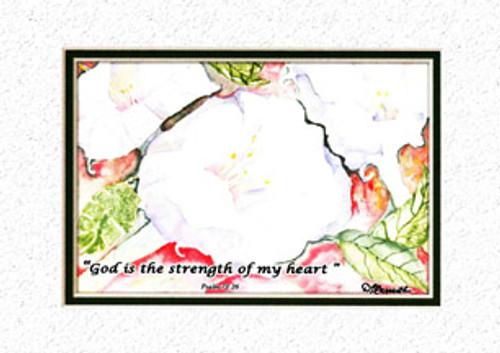 KJV Scripture Sympathy Card - White Morning Glories