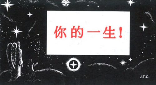 Chinese: This Was Your Life - Tract