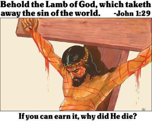 Behold the Lamb of God - Ladies T-Shirt