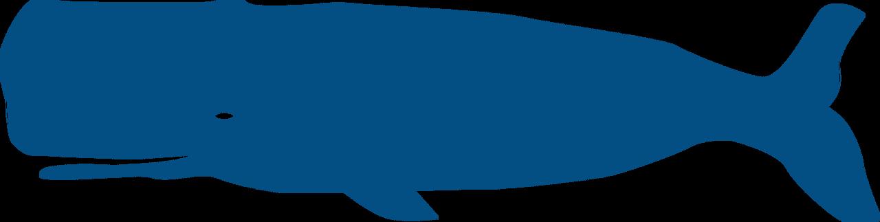 Whale #4 SVG Cut File