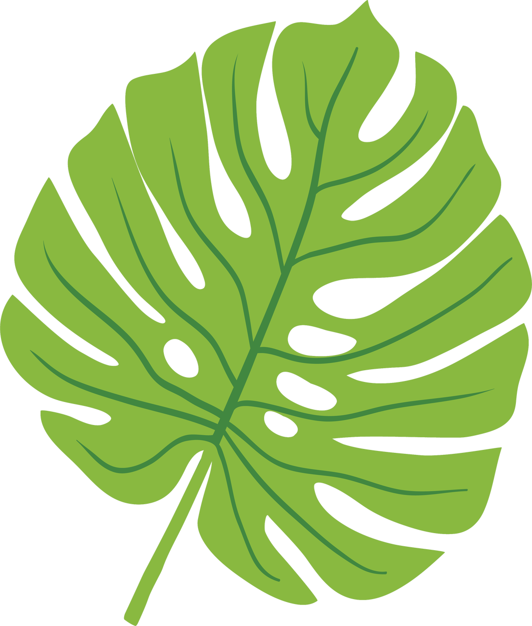 Tropical Leaf SVG Cut File - Snap Click Supply Co.
