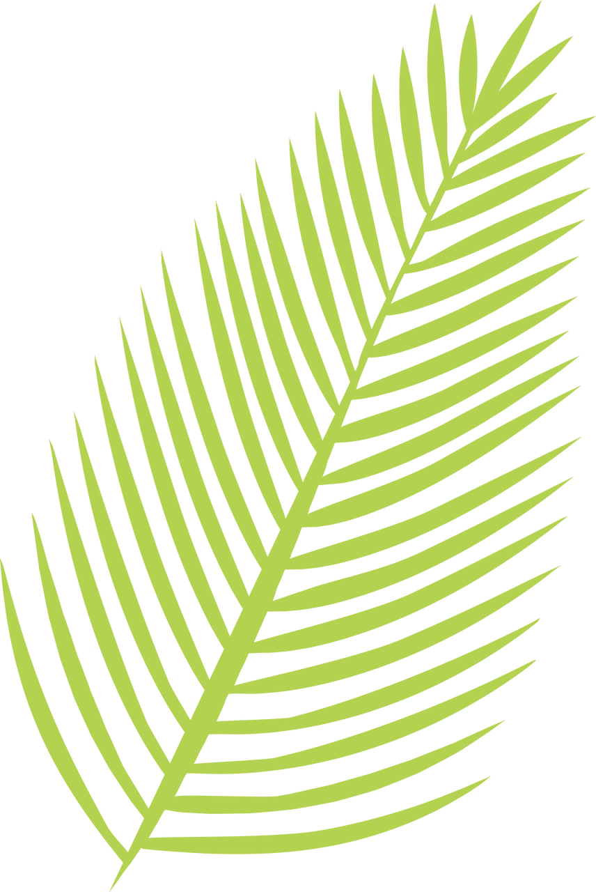 Palm Leaf SVG Cut File