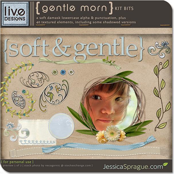 Gentle Morn Kit Bits