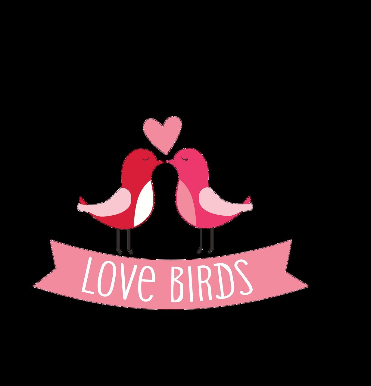 Love Birds SVG Cut File
