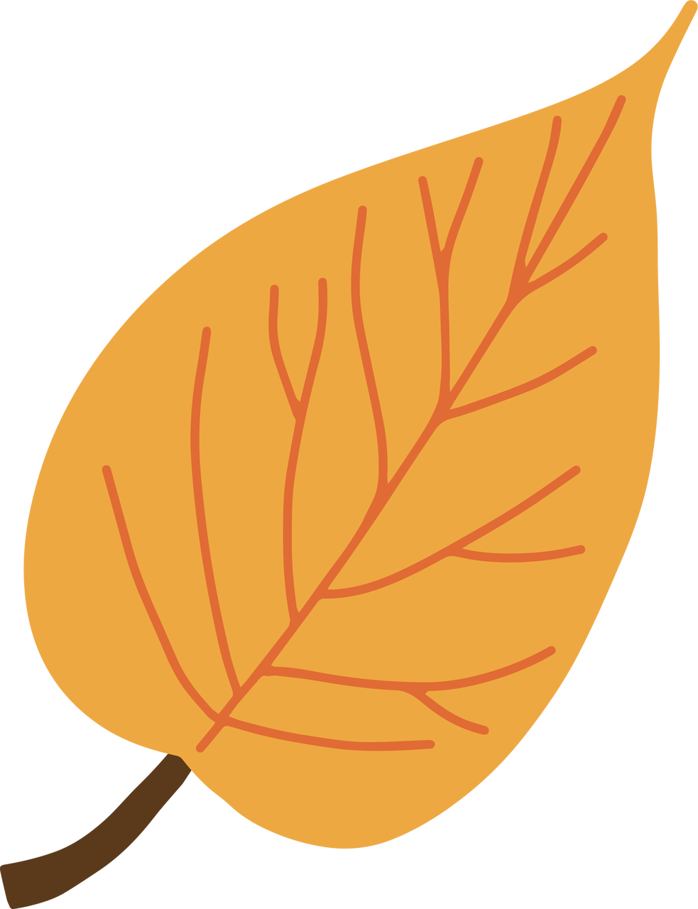 Fall Leaf #6 SVG Cut File