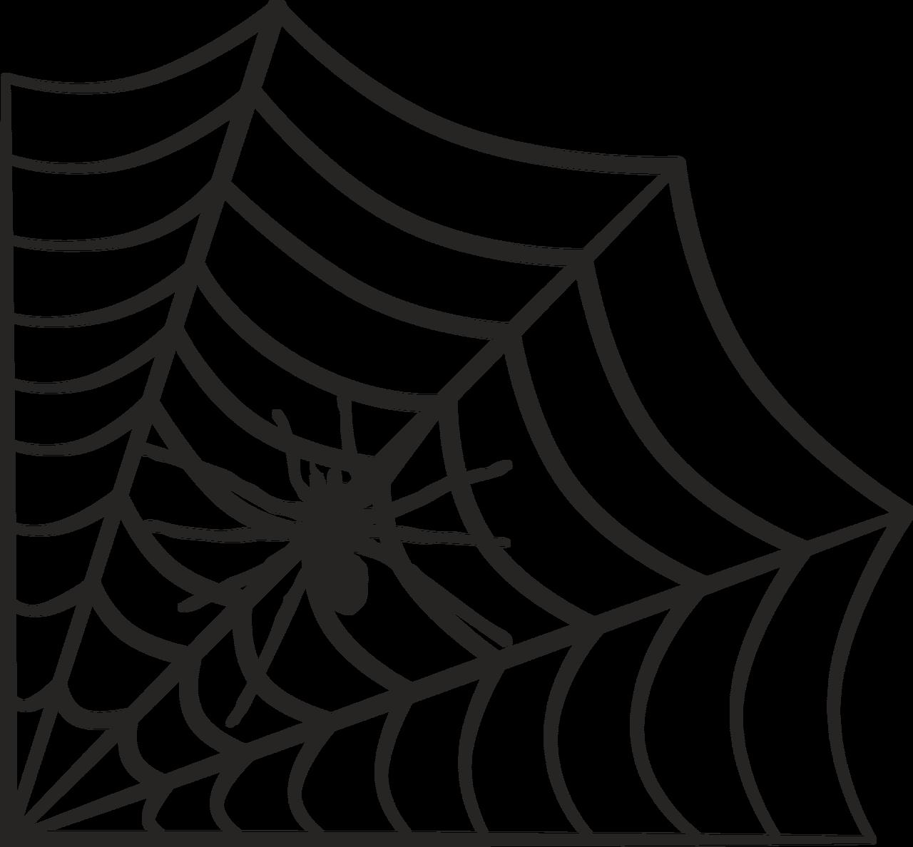 Spider Web #4 SVG Cut File