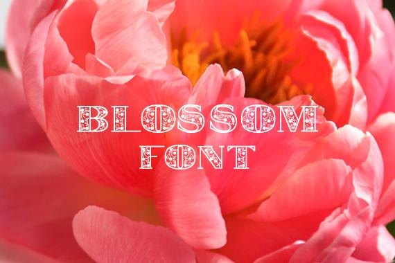 CG Blossom Font