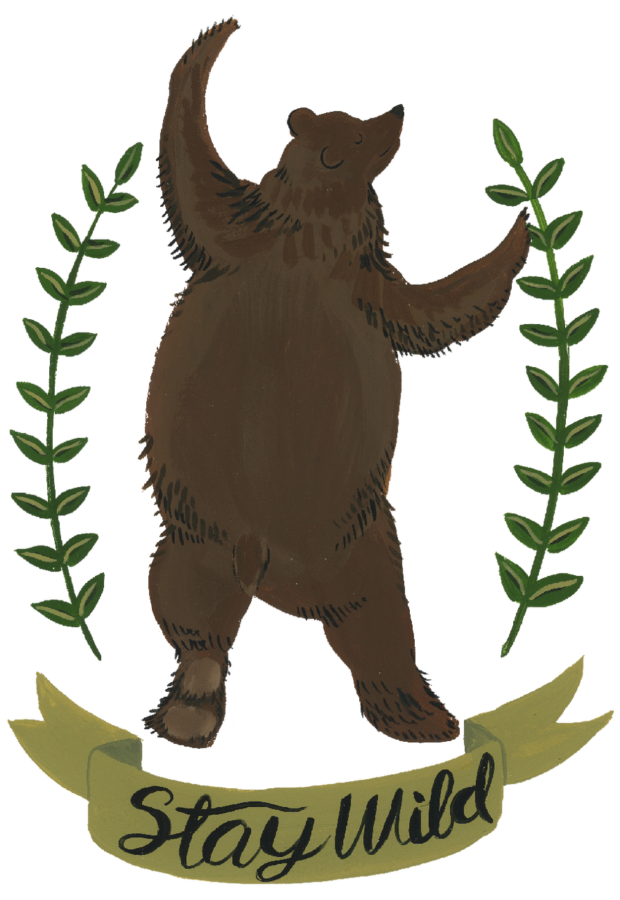 Stay Wild Bear Svg Cut File Snap Click Supply Co