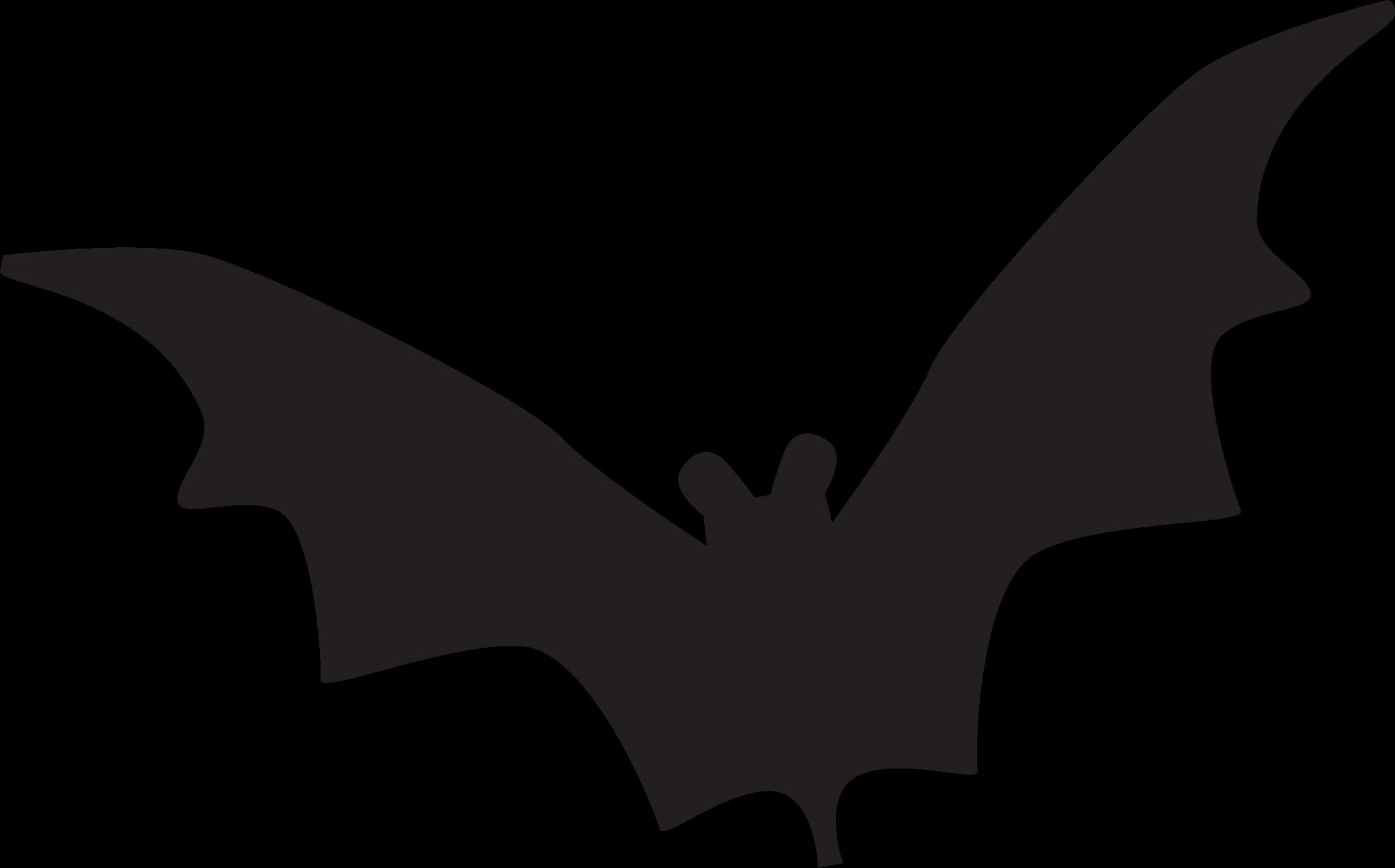 Trick Or Treat Bat SVG Cut File