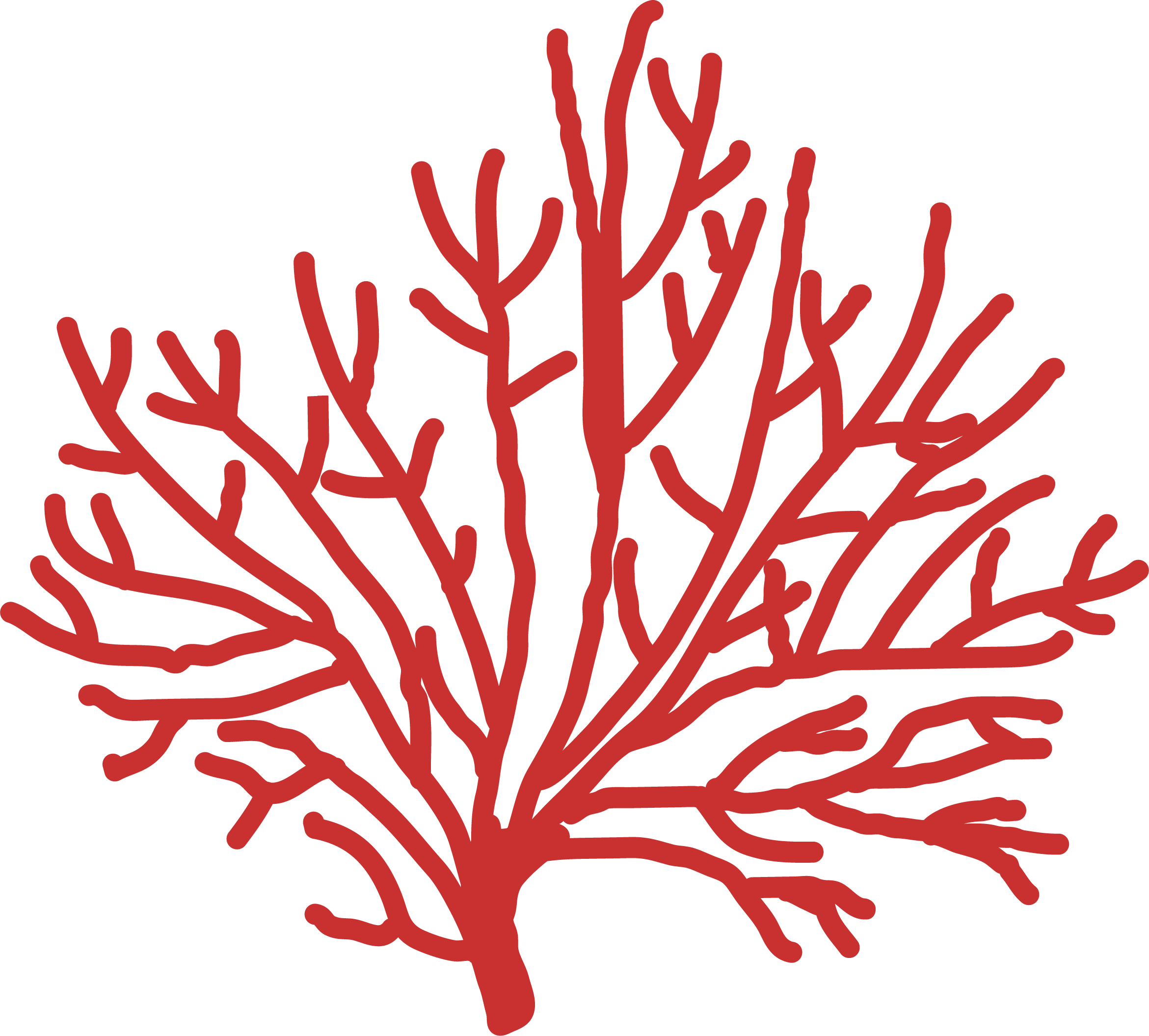 By The Sea Coral SVG Cut File