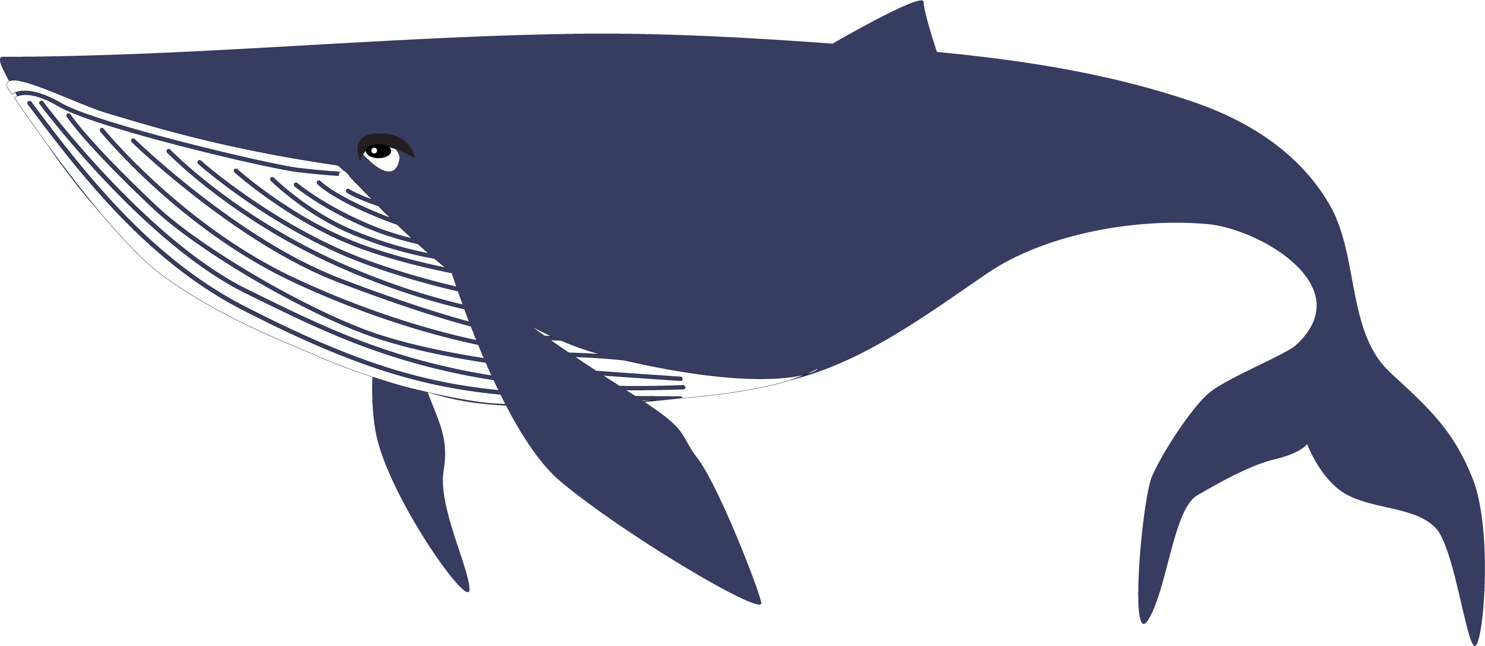 By The Sea Whale SVG Cut File