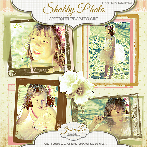 Shabby Photo Frames I