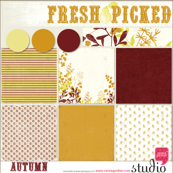 FRESH PICKED AUTUMN PAPERS