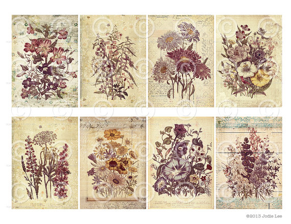 picture relating to Free Printable Shabby Chic Paper identify Shabby Stylish Bouquets Printable Present Tags