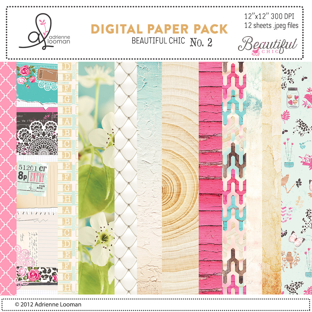 Beautiful Chic digital paper pack no. 2