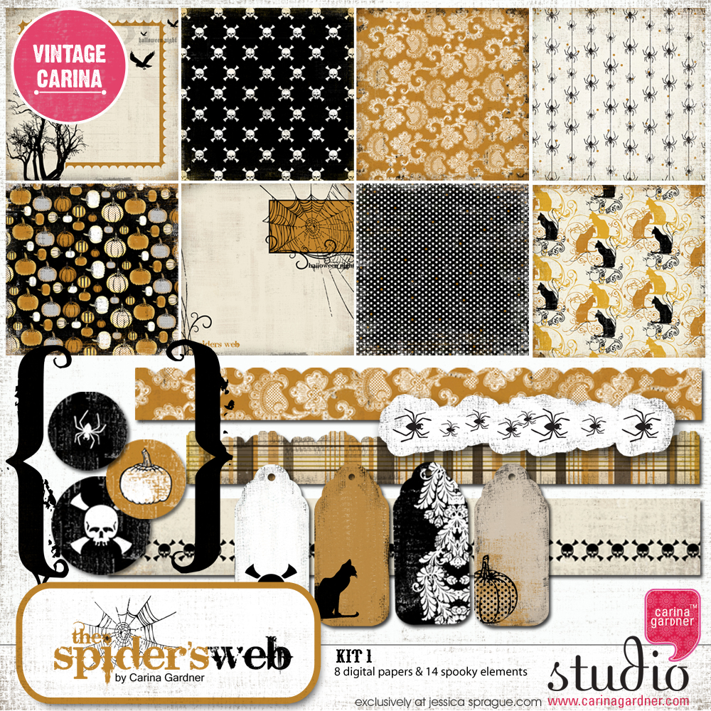 THE SPIDER'S WEB Kit 1