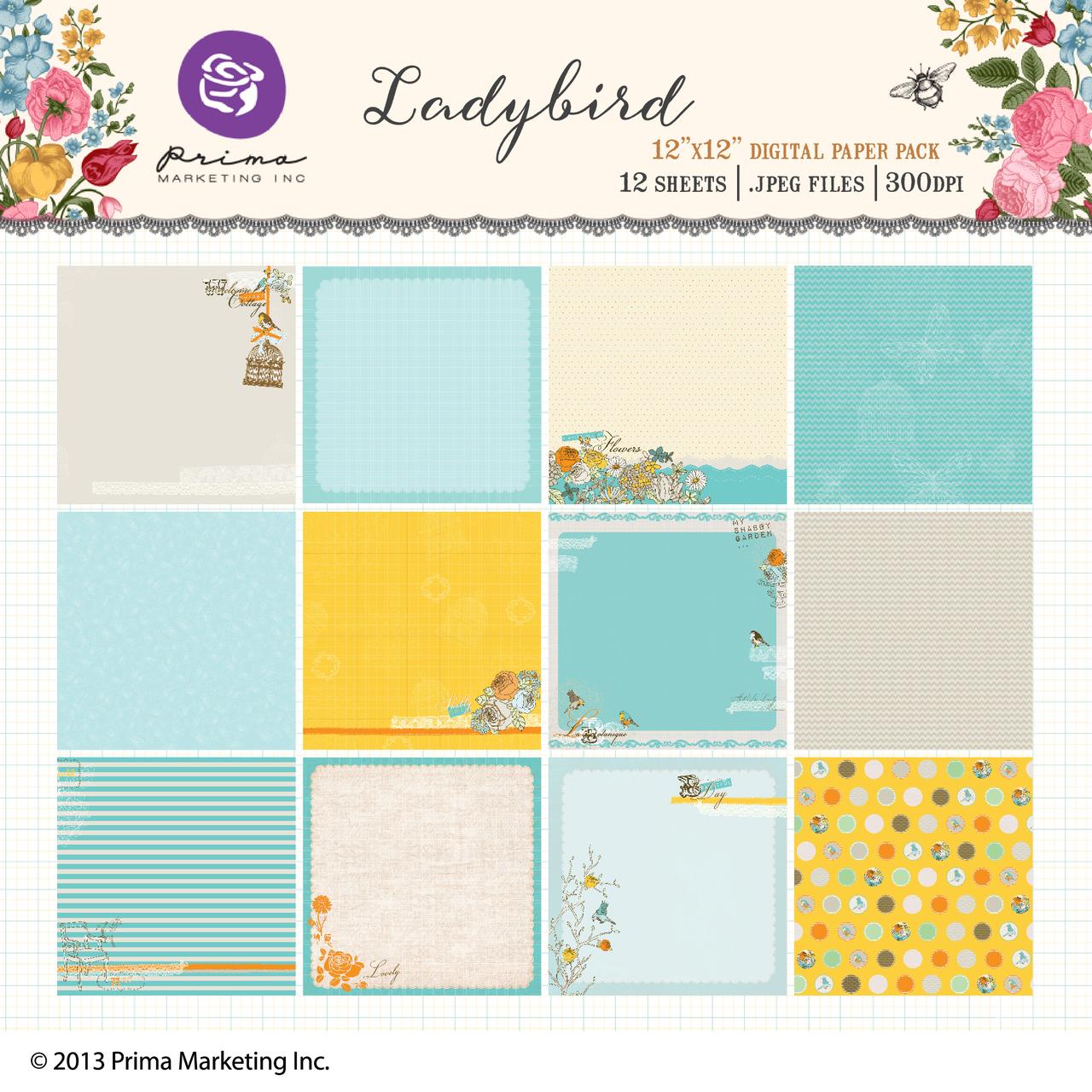 Lady Bird digital paper pack