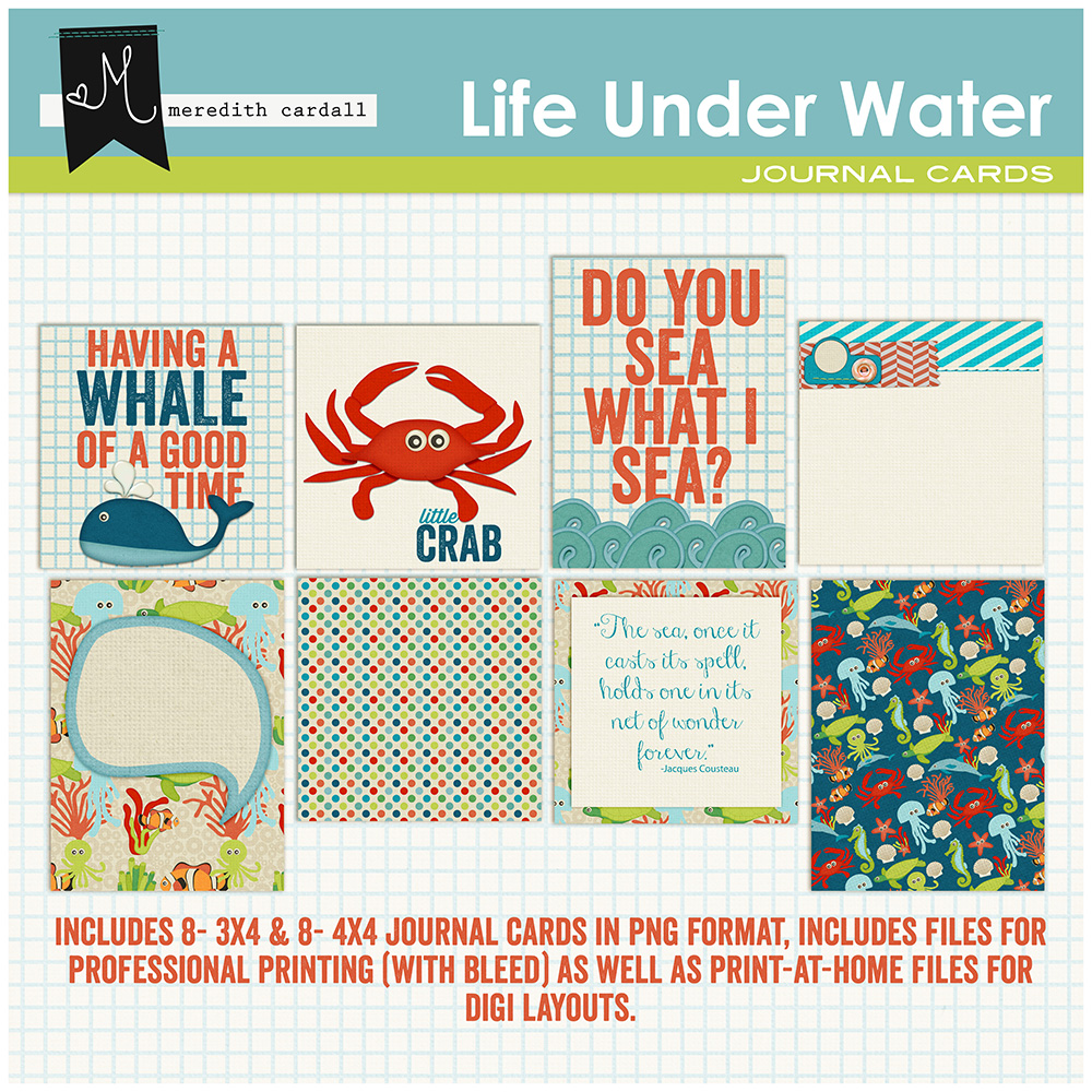 Life Under The Water Cards
