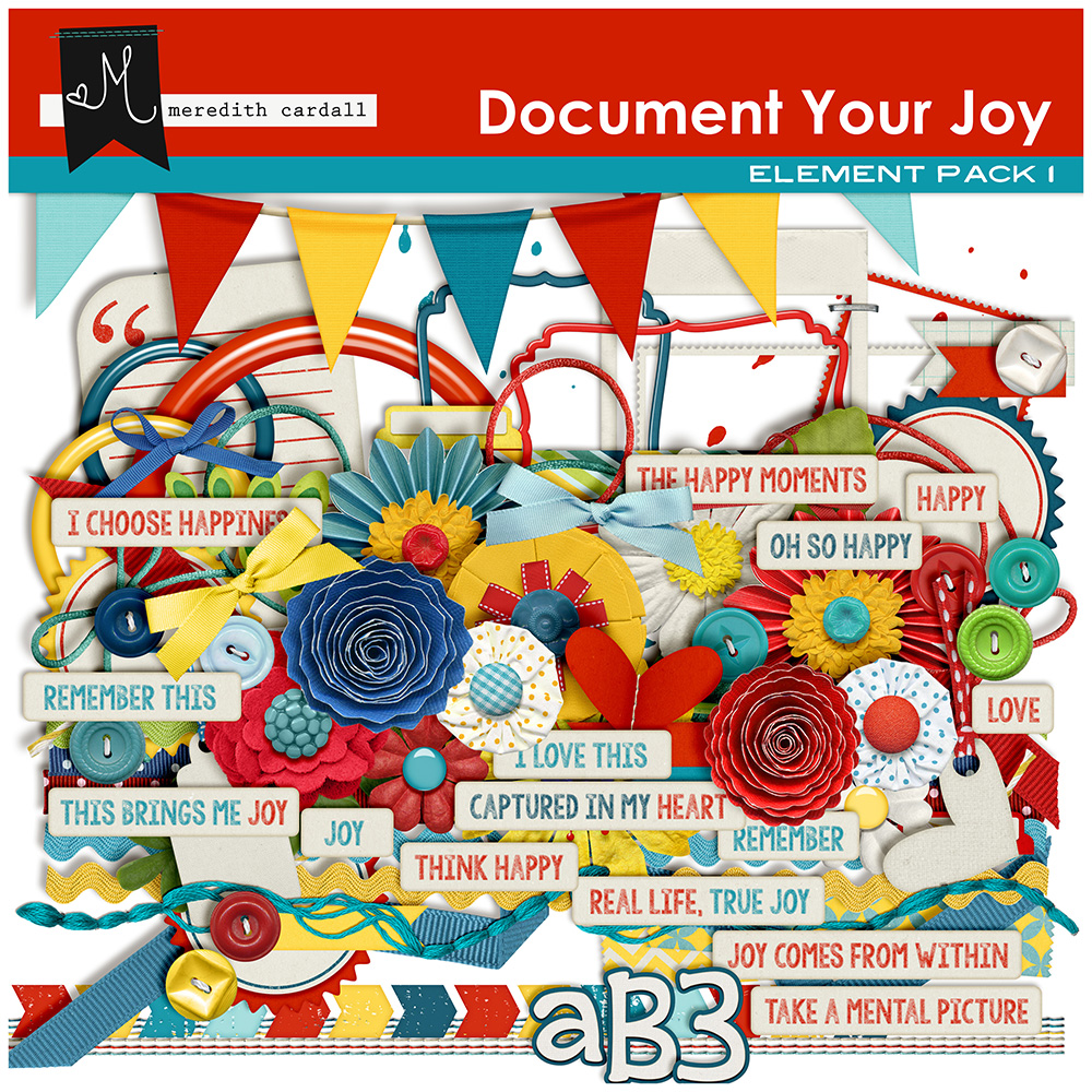 Document Your Joy Collection