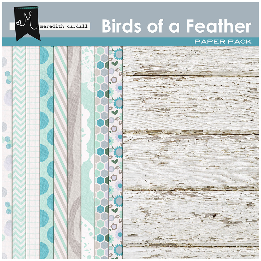 Birds of a Feather Papers