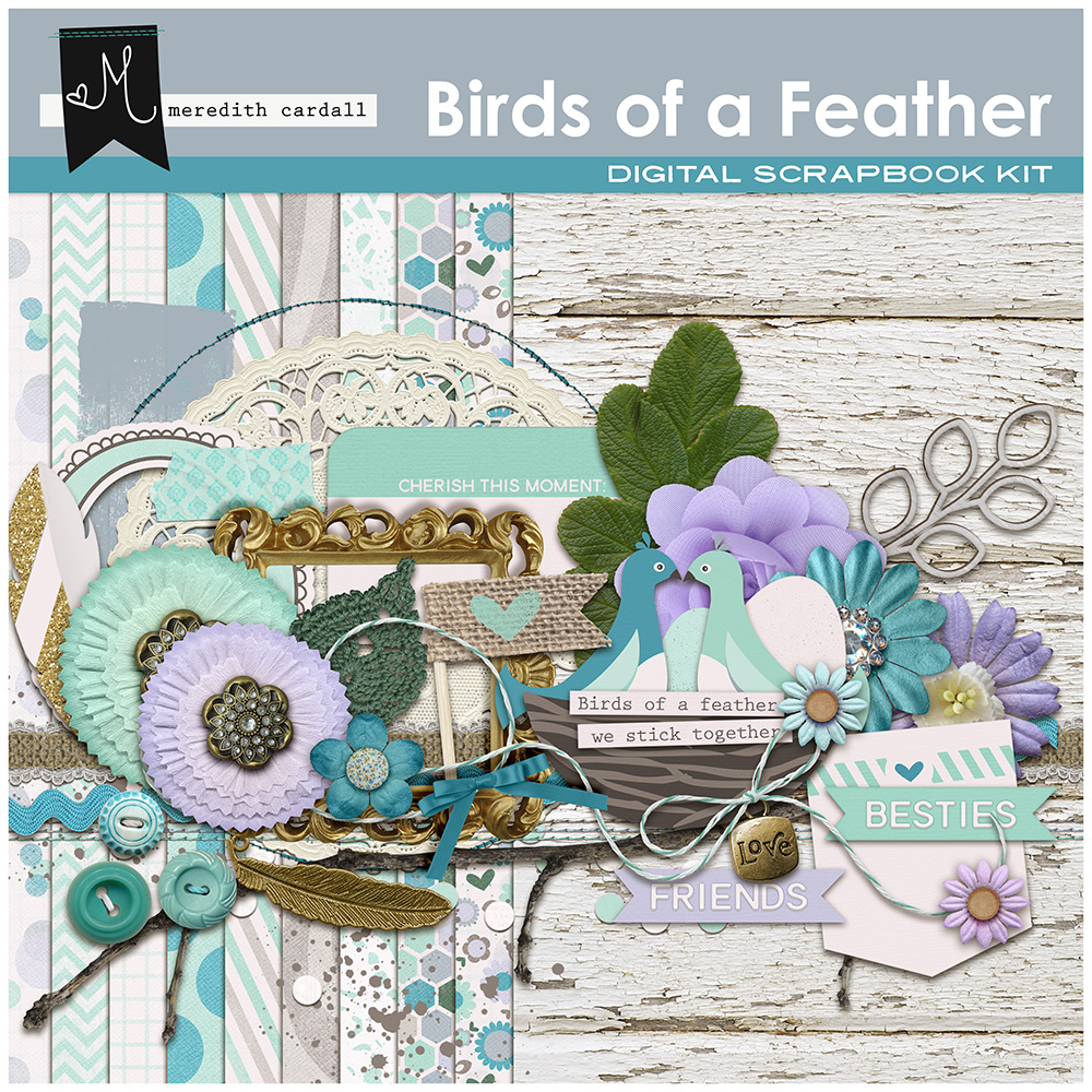 Birds of a Feather Collection