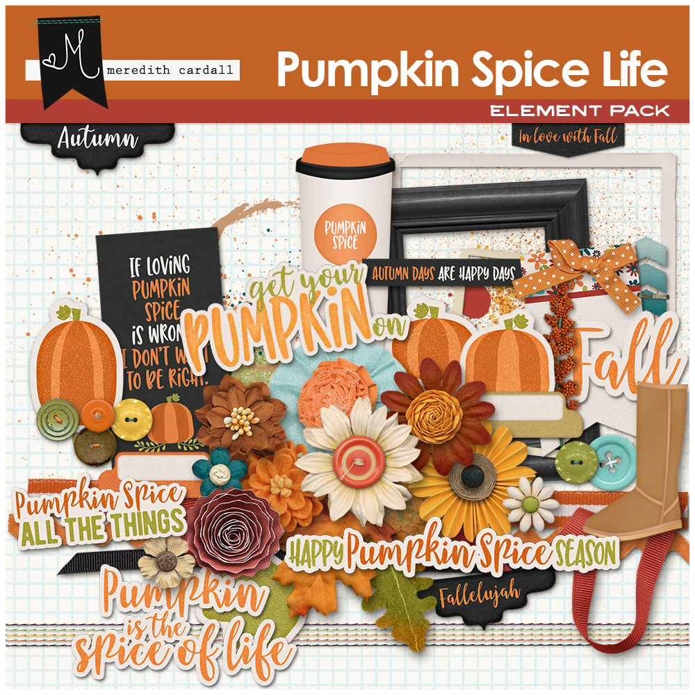 Pumpkin Spice Life Kit