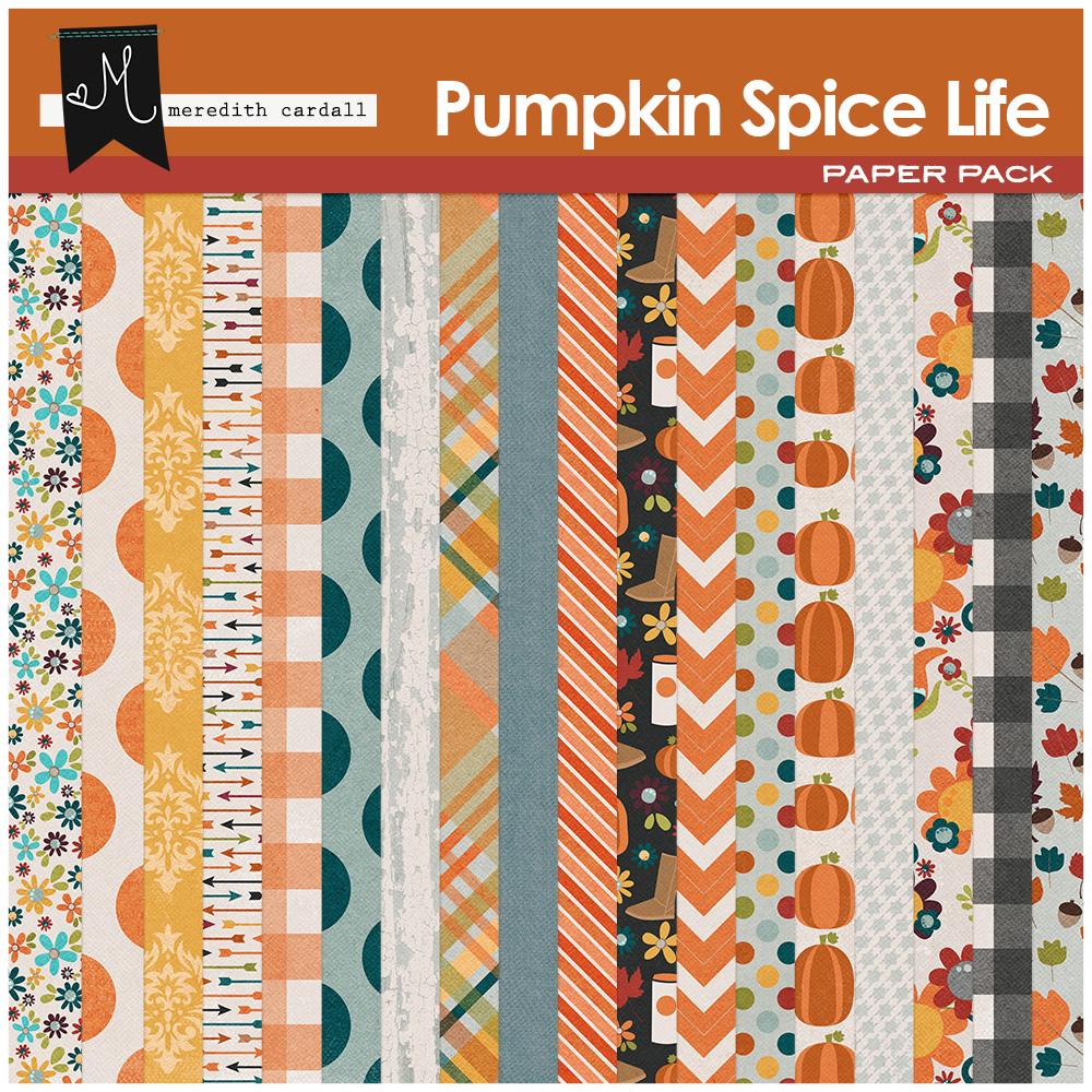 Pumpkin Spice Life Kit