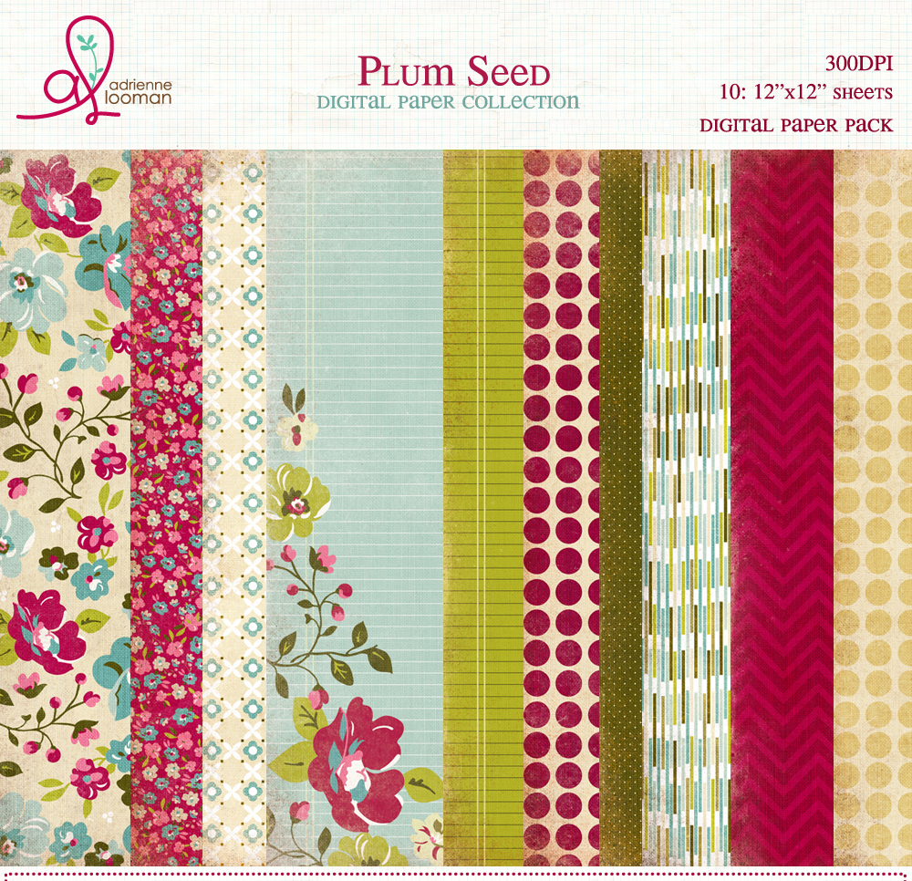 Paper Pack Plum Seed