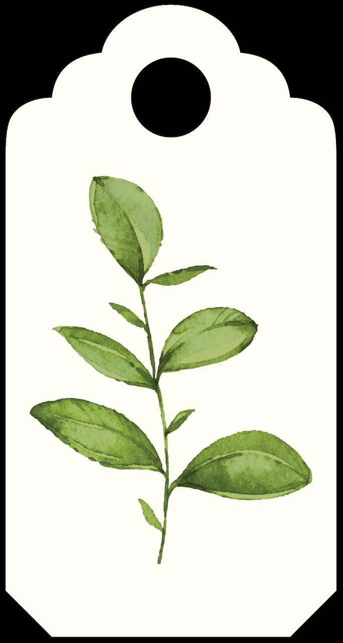 Leaf Tag Print & Cut File