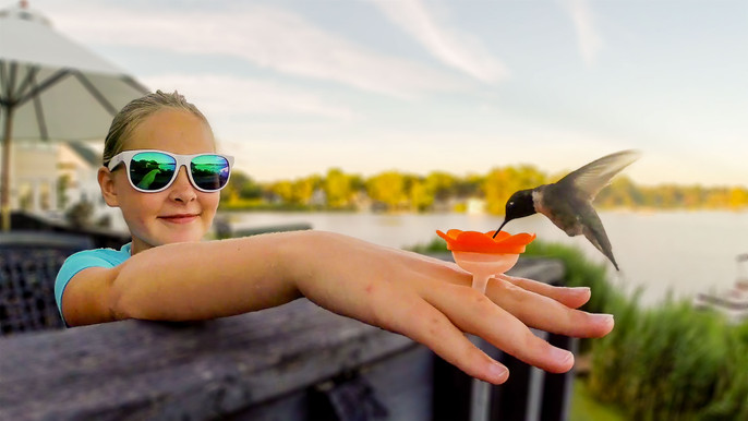 Step daughter hand feeding her first hummingbird.