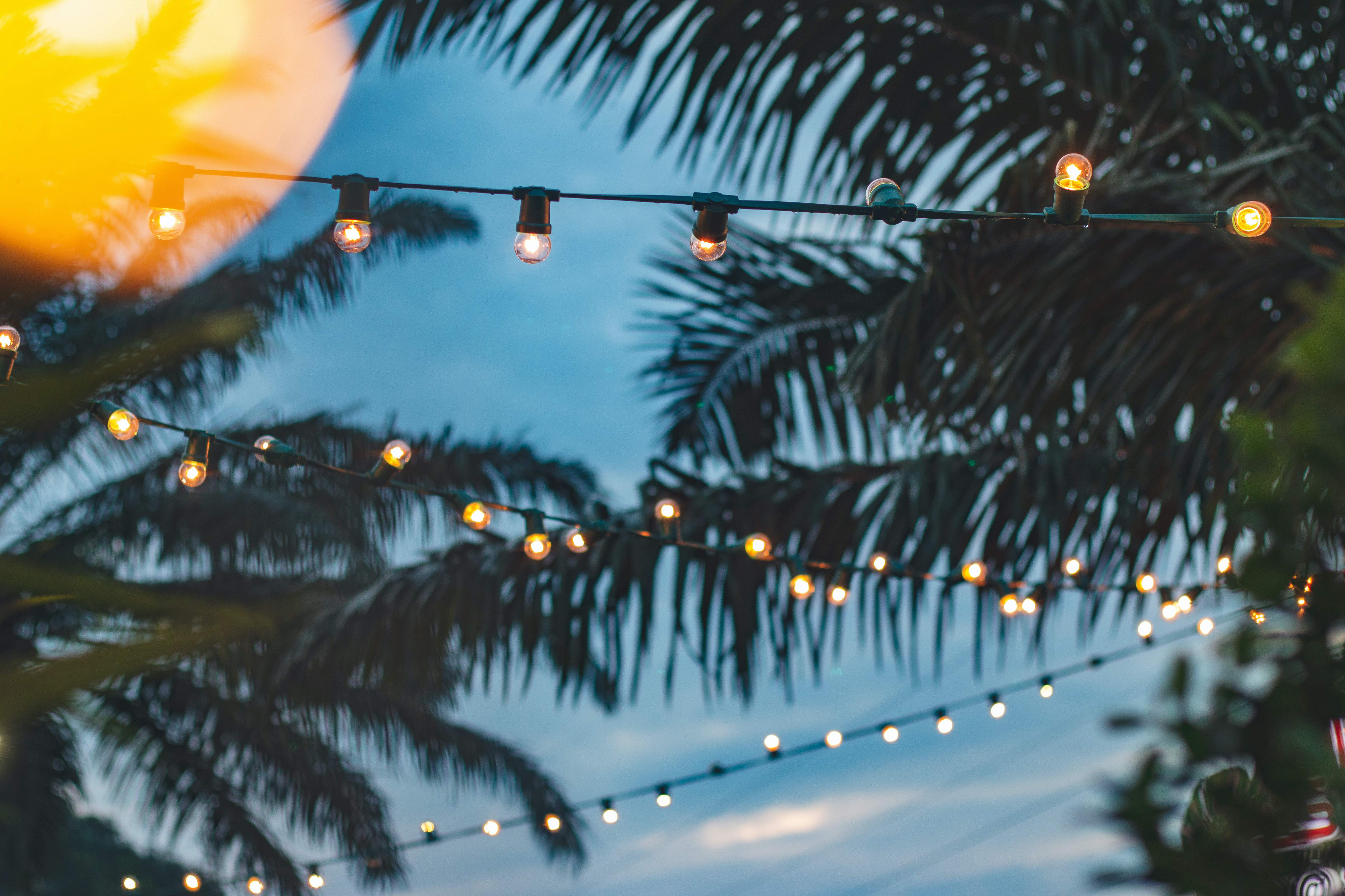 3 Qualities that Keep our Christmas Lights  Bright in Hot, Sunny Weather